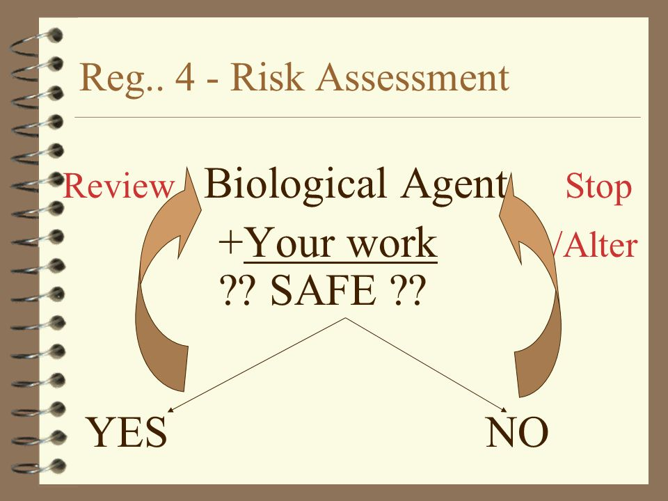 +Your work /Alter SAFE YES NO Reg Risk Assessment
