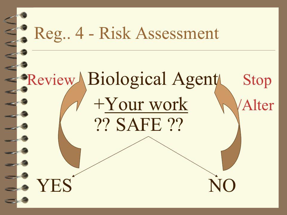 +Your work /Alter SAFE YES NO Reg.. 4 - Risk Assessment