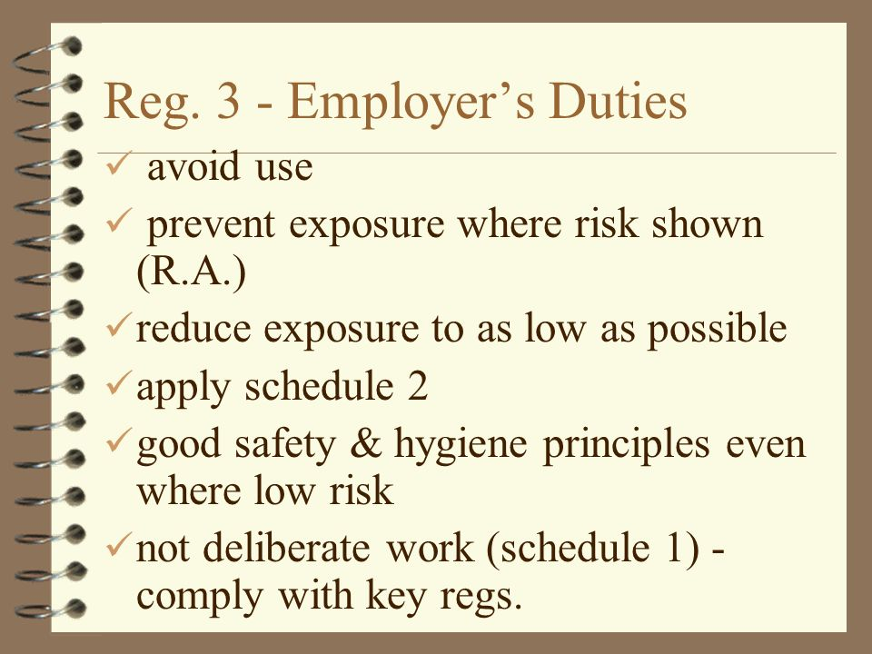 Reg. 3 - Employer's Duties