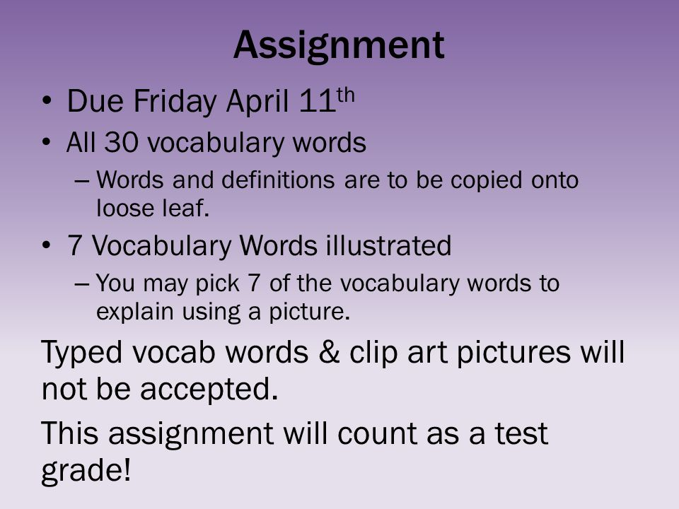 Assignment Due Friday April 11th