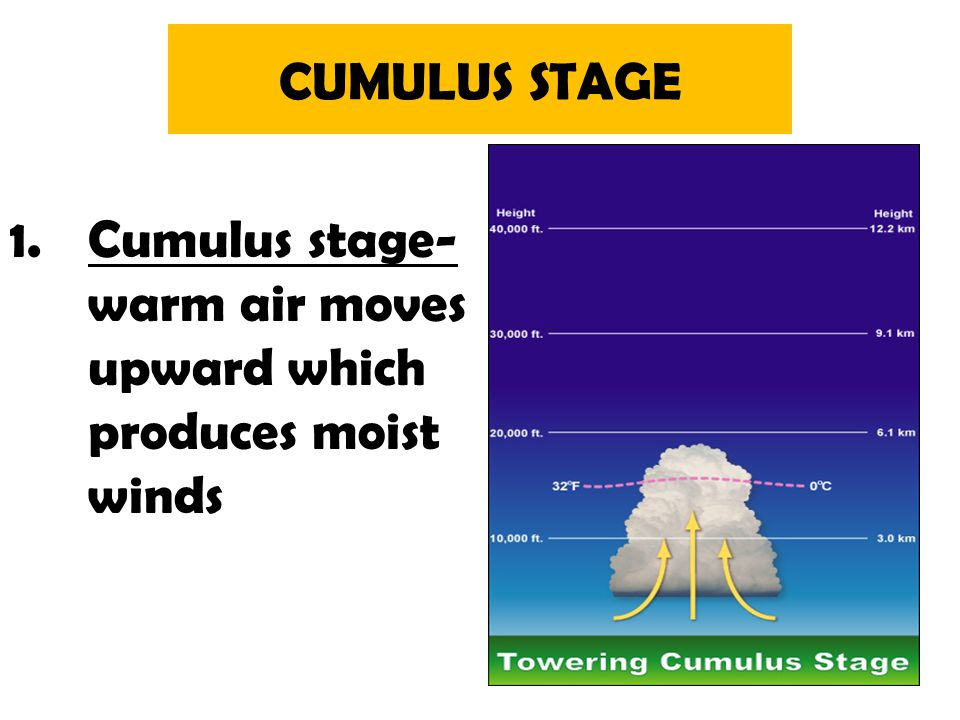 CUMULUS STAGE Cumulus stage- warm air moves upward which produces moist winds