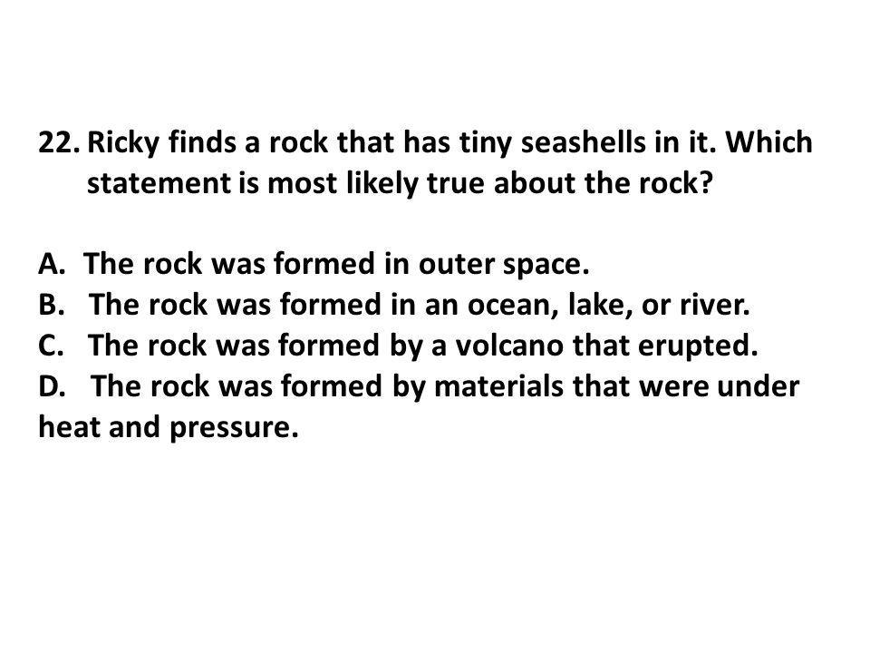 Ricky finds a rock that has tiny seashells in it