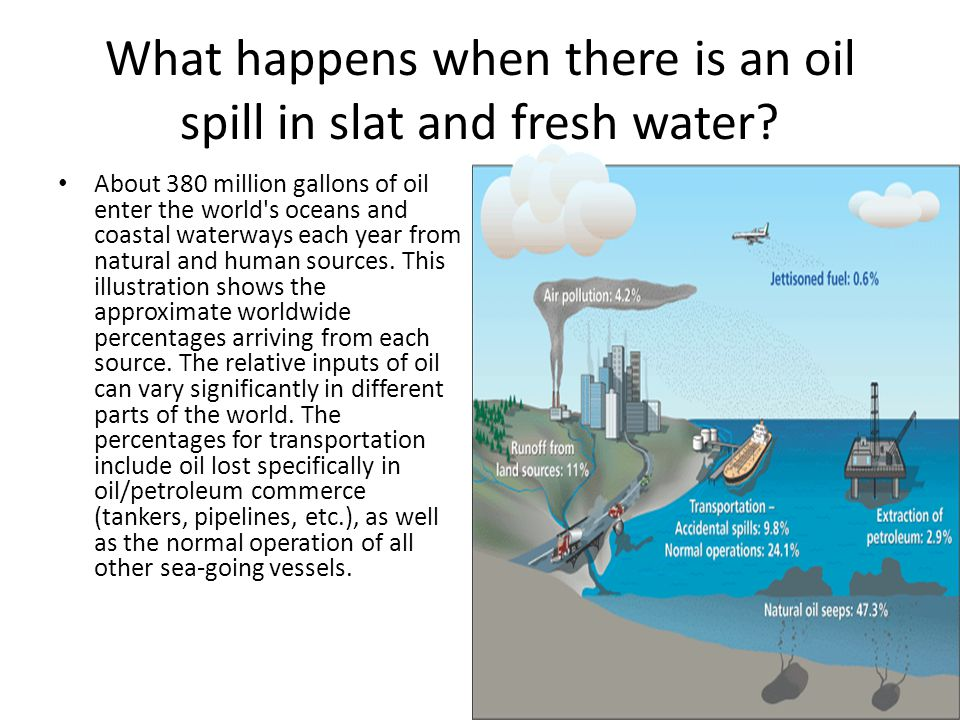 What happens when there is an oil spill in slat and fresh water