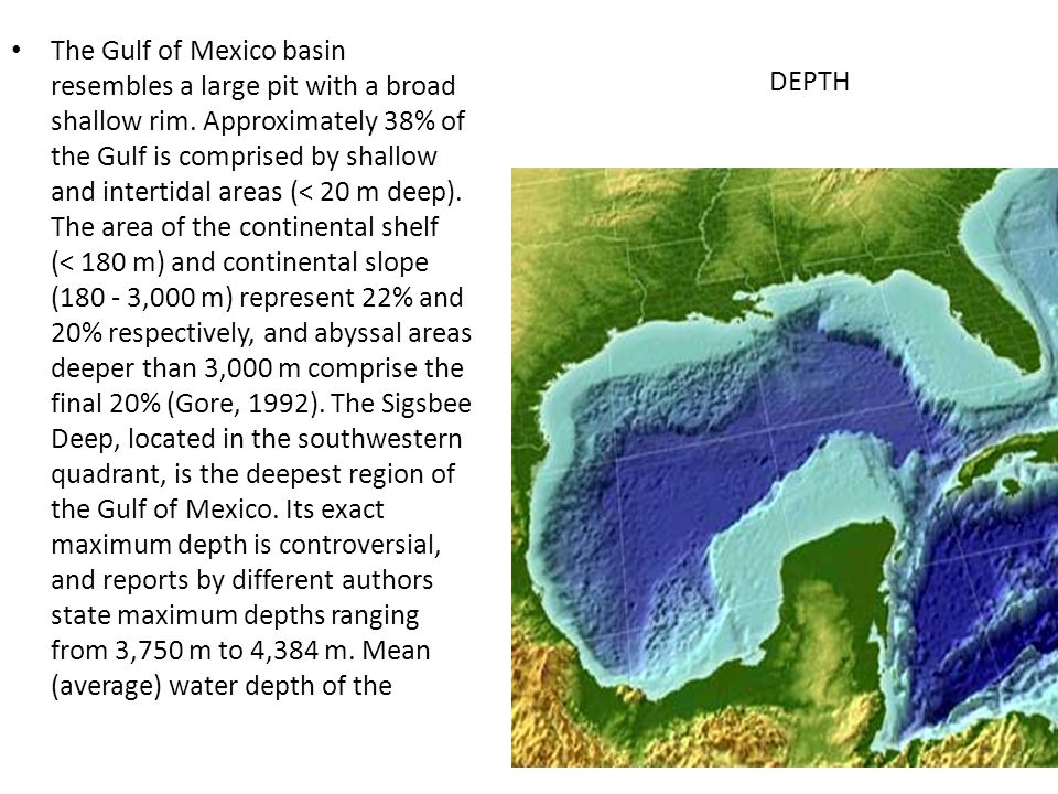 The Gulf of Mexico basin resembles a large pit with a broad shallow rim. Approximately 38% of the Gulf is comprised by shallow and intertidal areas (< 20 m deep). The area of the continental shelf (< 180 m) and continental slope (180 - 3,000 m) represent 22% and 20% respectively, and abyssal areas deeper than 3,000 m comprise the final 20% (Gore, 1992). The Sigsbee Deep, located in the southwestern quadrant, is the deepest region of the Gulf of Mexico. Its exact maximum depth is controversial, and reports by different authors state maximum depths ranging from 3,750 m to 4,384 m. Mean (average) water depth of the