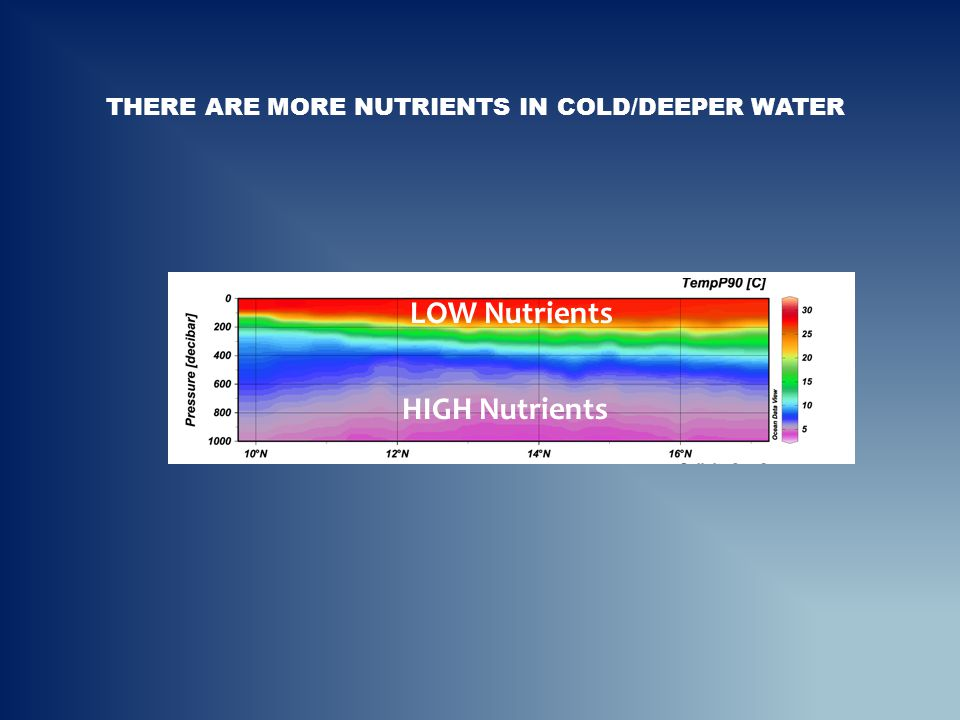 There are more nutrients in cold/deeper water