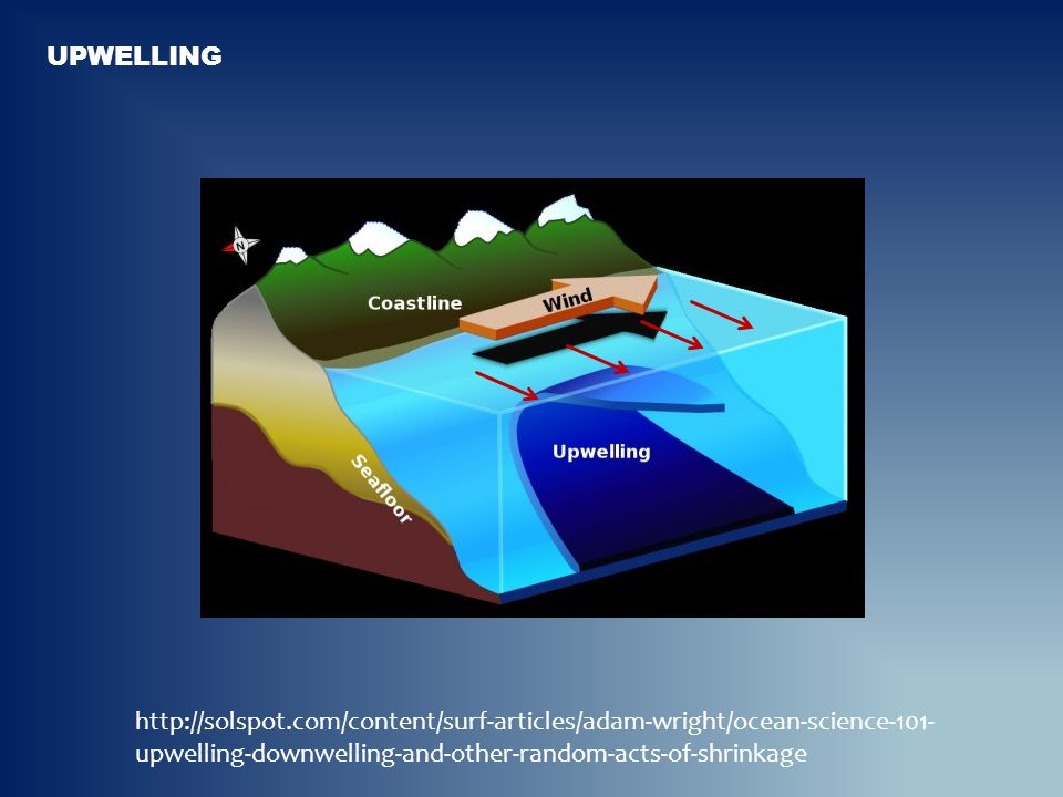 Upwelling http://solspot.com/content/surf-articles/adam-wright/ocean-science-101-upwelling-downwelling-and-other-random-acts-of-shrinkage.