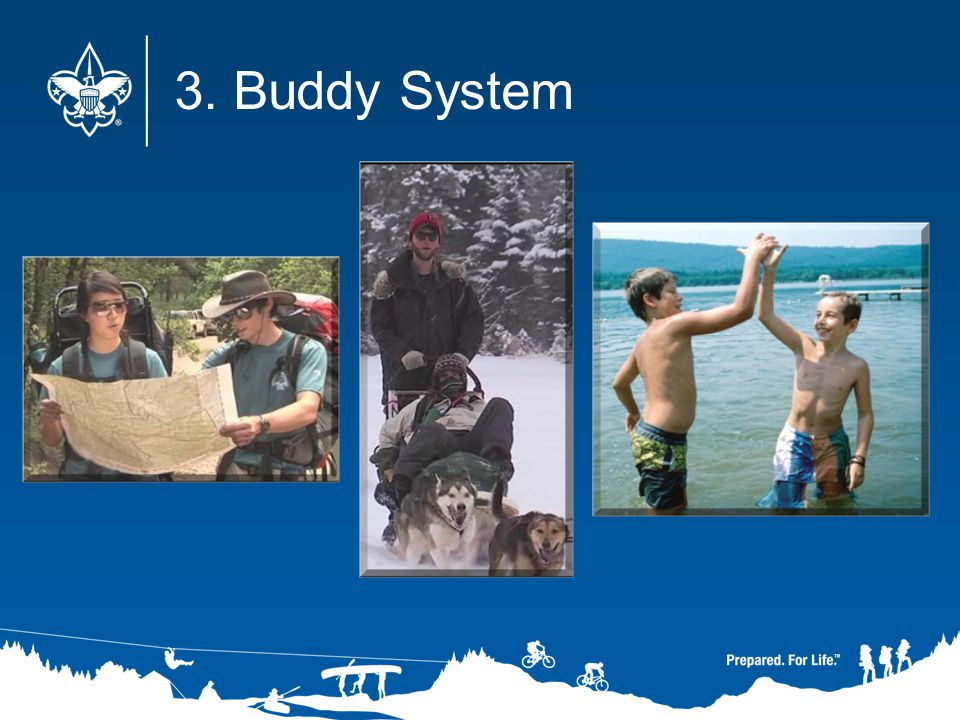 3. Buddy System