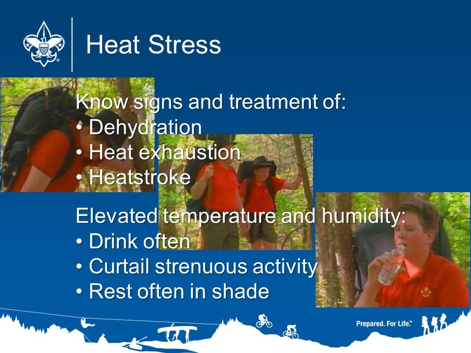 Heat Stress Know signs and treatment of: Dehydration Heat exhaustion