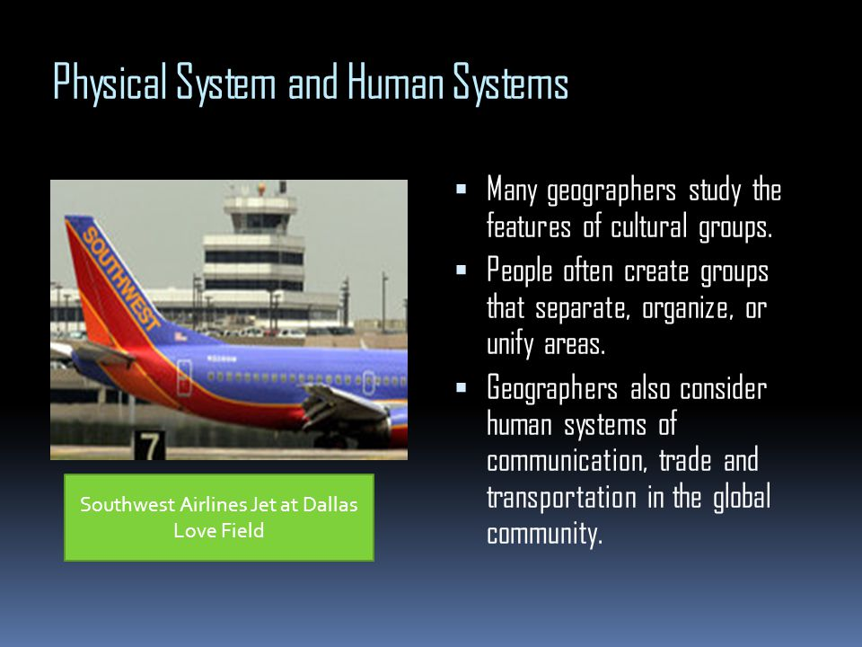 Physical System and Human Systems