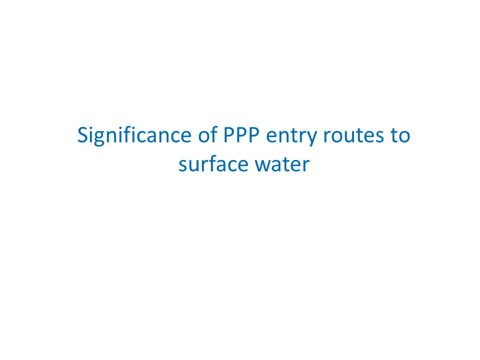 Significance of PPP entry routes to