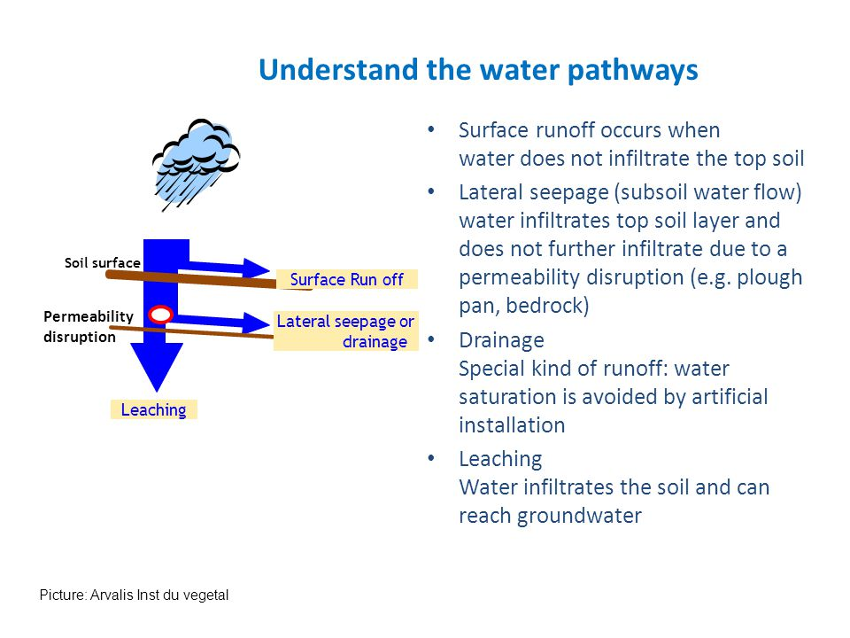 Understand the water pathways
