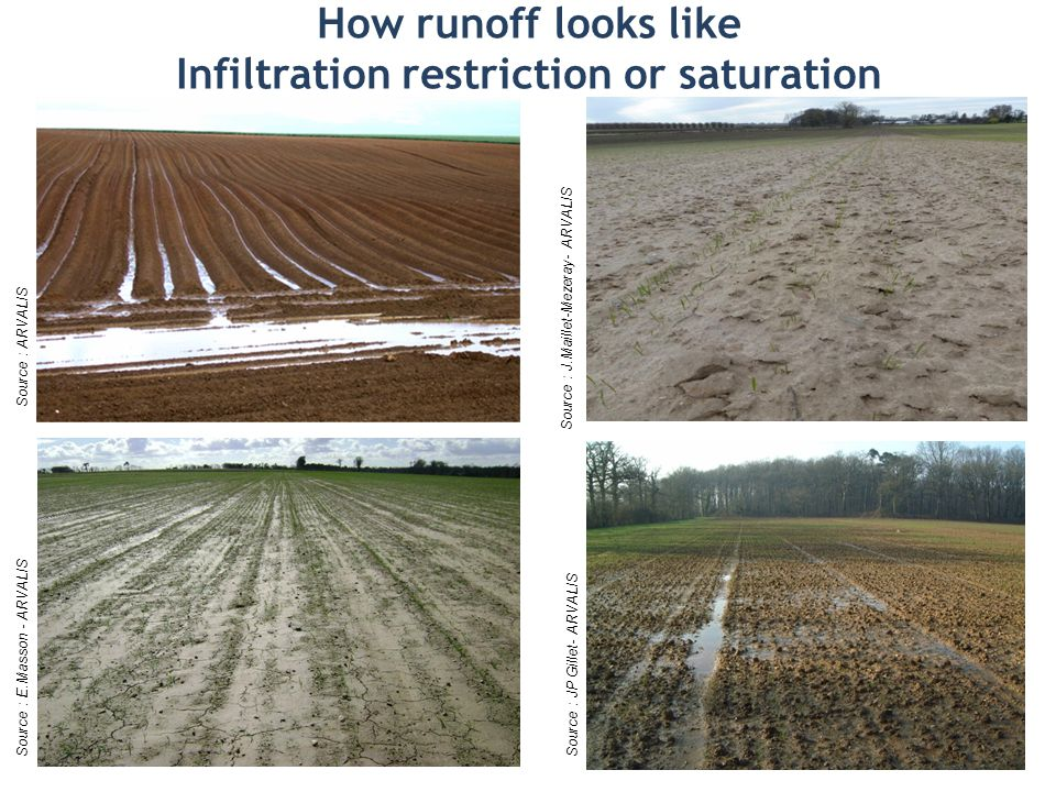 How runoff looks like Infiltration restriction or saturation