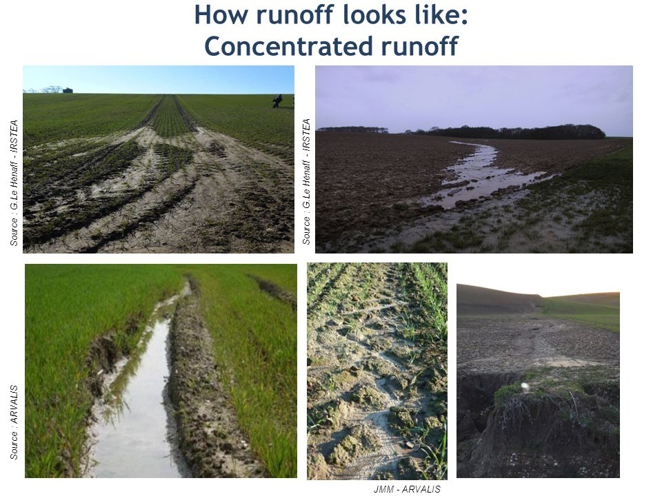 How runoff looks like: Concentrated runoff