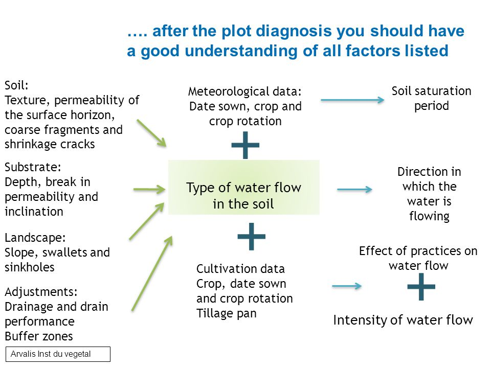 …. after the plot diagnosis you should have a good understanding of all factors listed