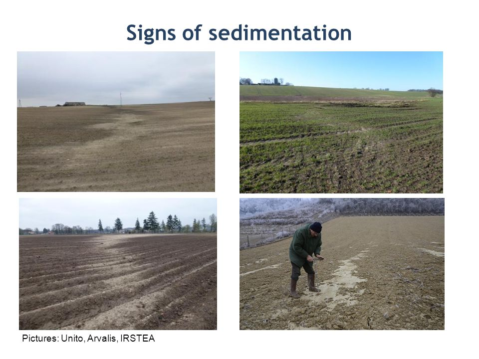 Signs of sedimentation