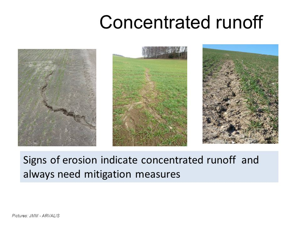 Concentrated runoff Signs of erosion indicate concentrated runoff and always need mitigation measures.