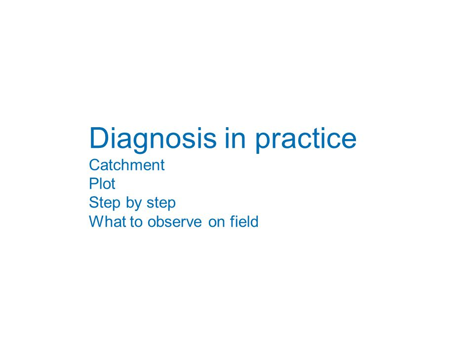 Diagnosis in practice Catchment Plot Step by step What to observe on field