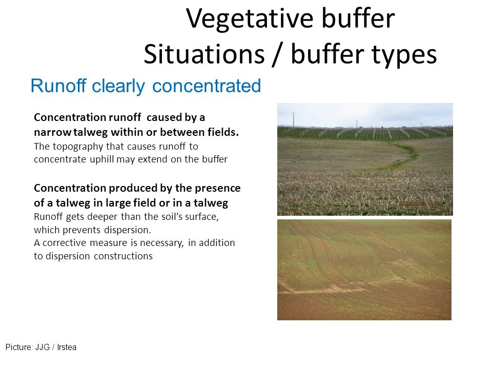 Vegetative buffer Situations / buffer types