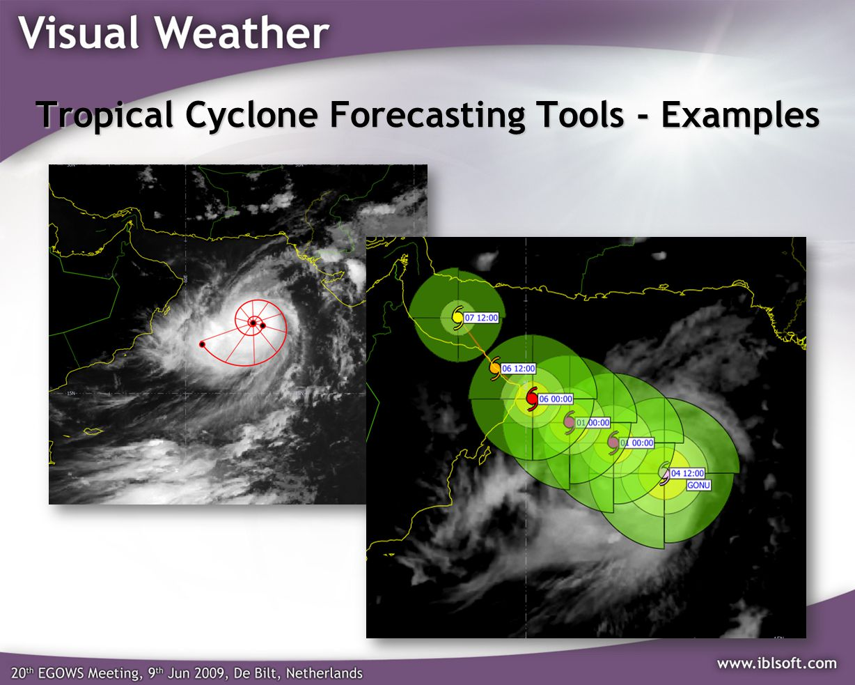 Tropical Cyclone Forecasting Tools - Examples