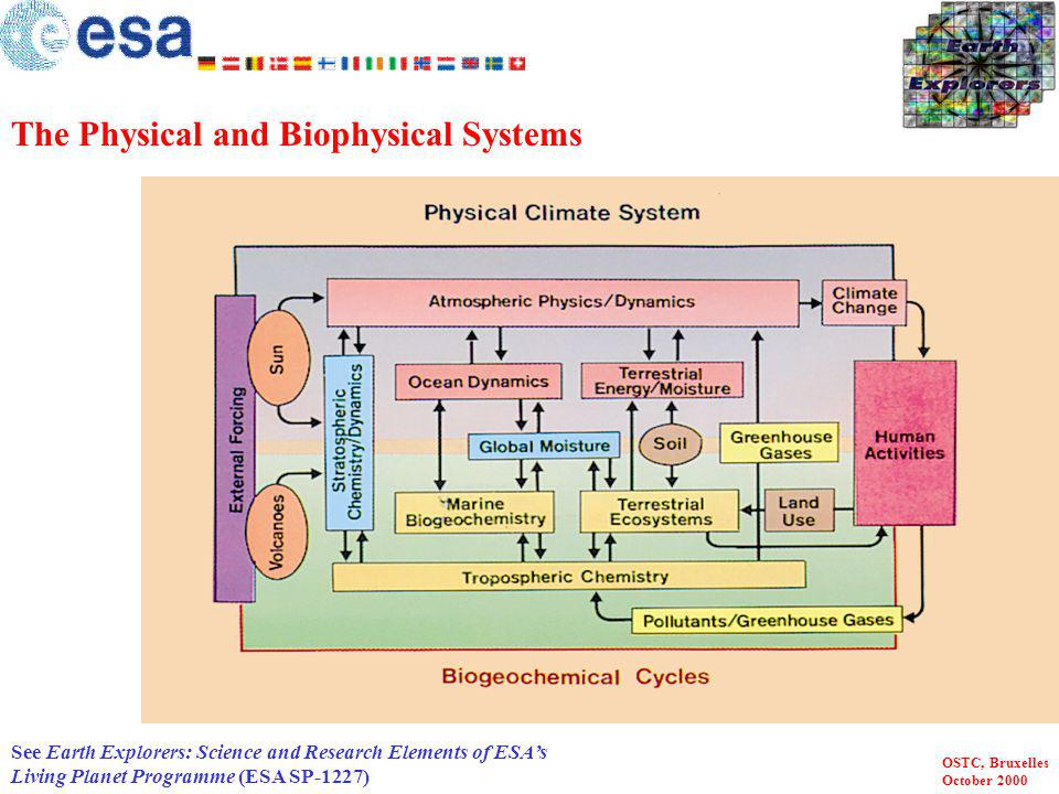 The Physical and Biophysical Systems