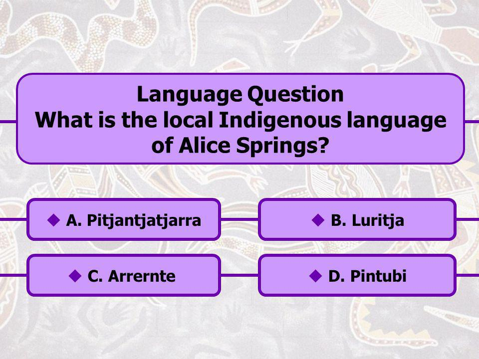 What is the local Indigenous language of Alice Springs