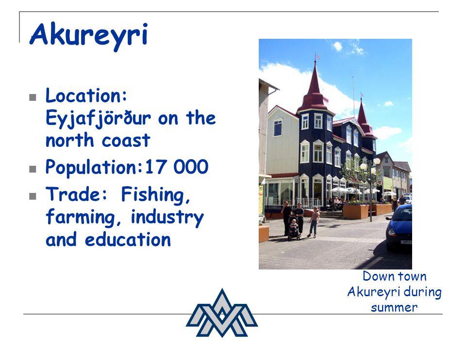 Down town Akureyri during summer