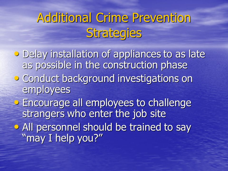 Additional Crime Prevention Strategies