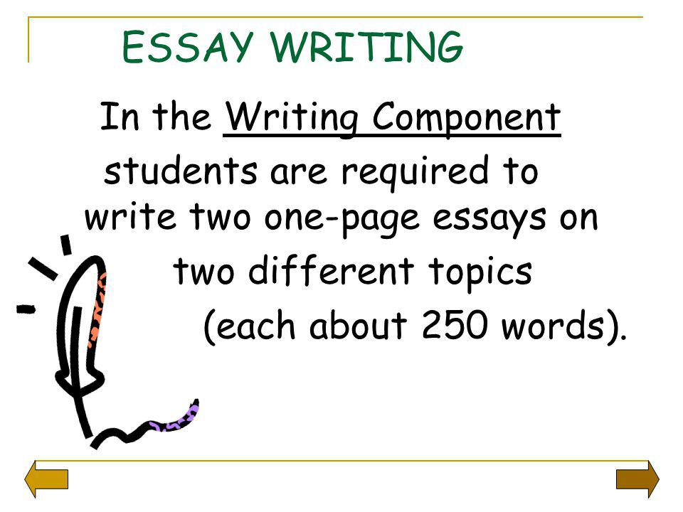 ESSAY WRITING students are required to write two one-page essays on