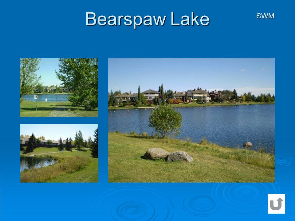 Bearspaw Lake SWM