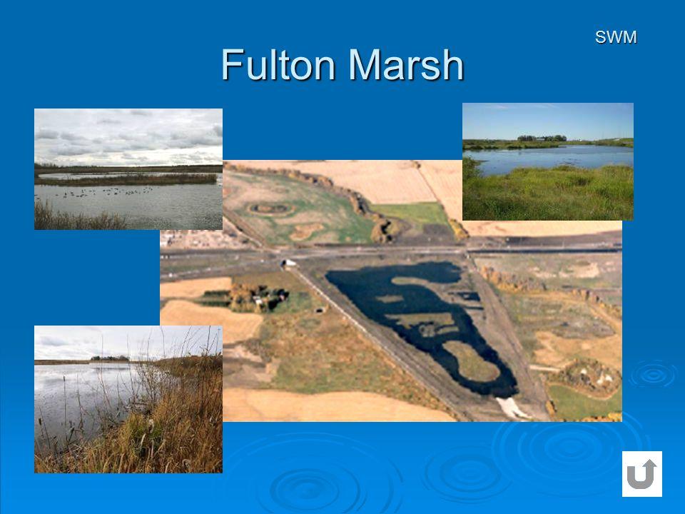 Fulton Marsh SWM