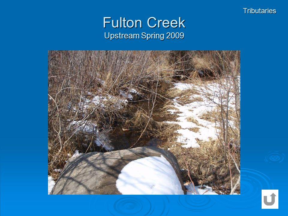 Fulton Creek Upstream Spring 2009