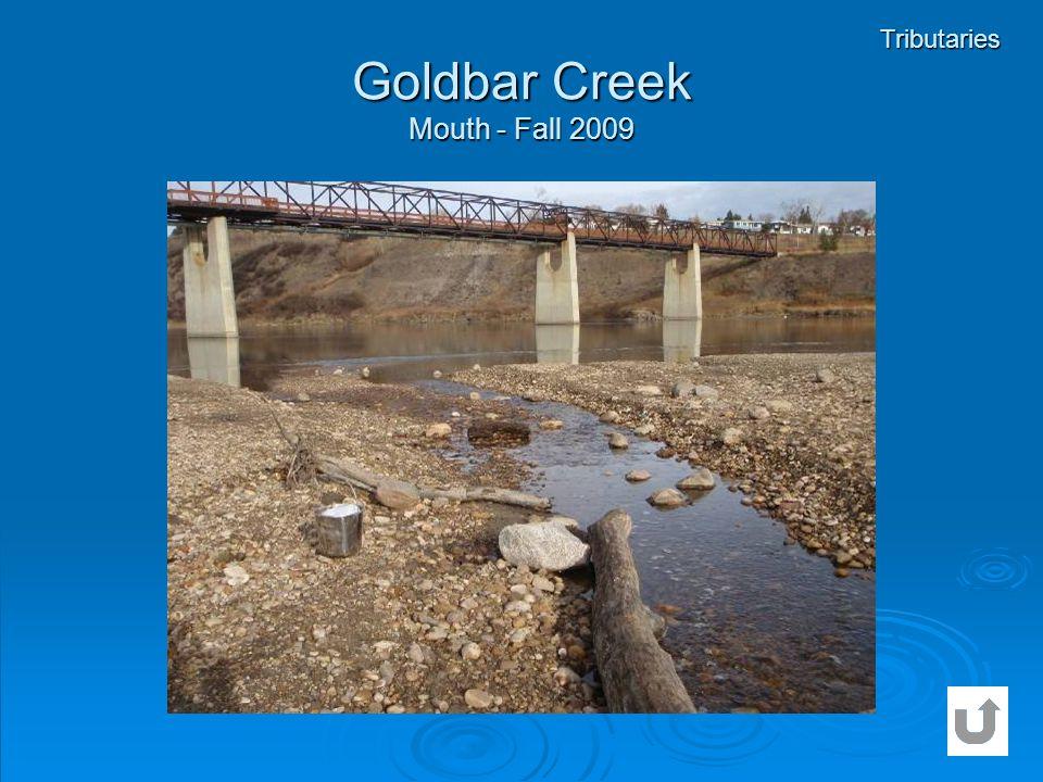 Goldbar Creek Mouth - Fall 2009