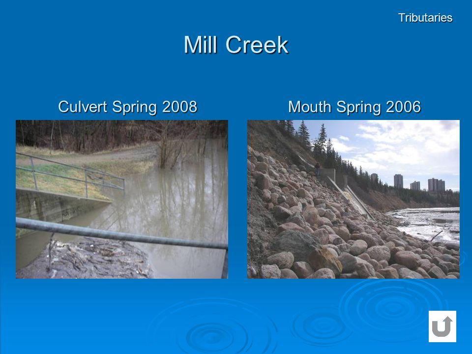 Tributaries Mill Creek Culvert Spring 2008 Mouth Spring 2006