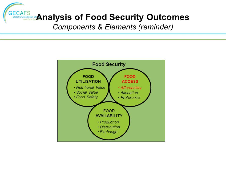 Analysis of Food Security Outcomes