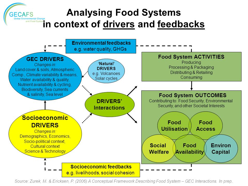 Analysing Food Systems in context of drivers and feedbacks