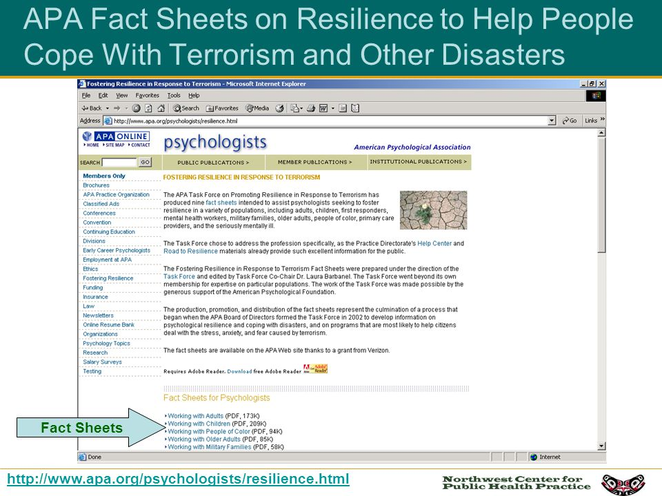 APA Fact Sheets on Resilience to Help People Cope With Terrorism and Other Disasters