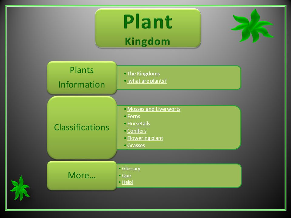 Plant Kingdom The Kingdoms what are plants Mosses and Liverworts