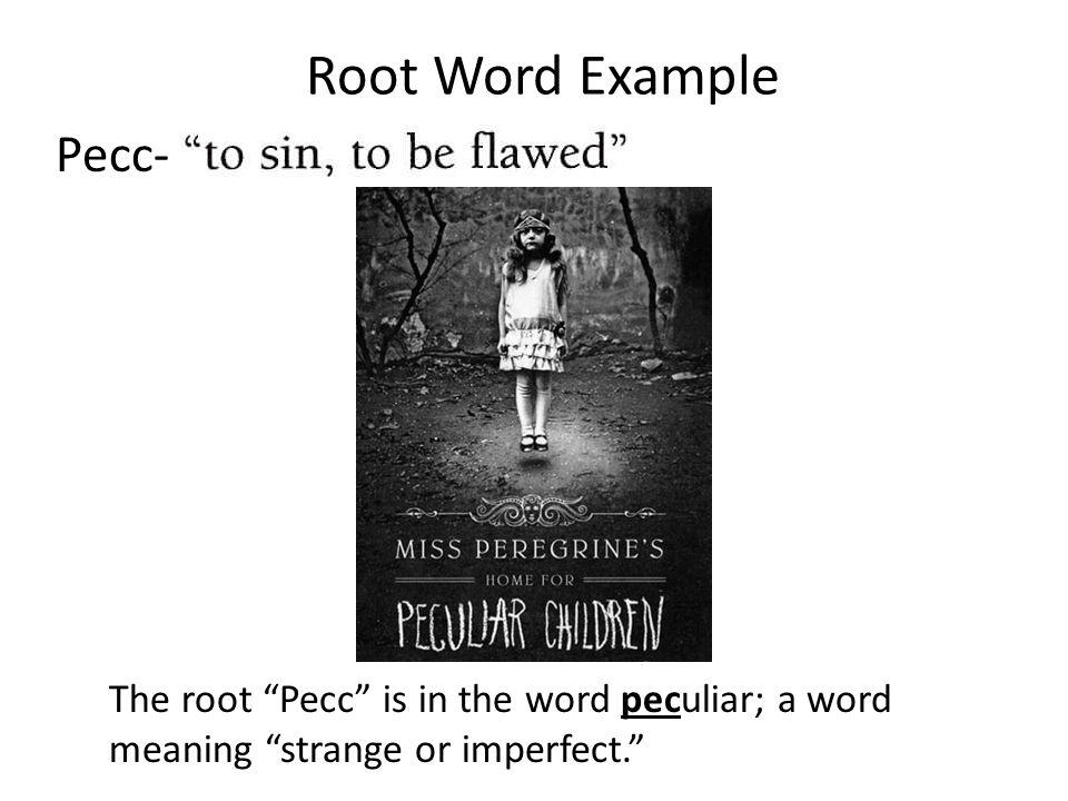 Root Word Example Pecc-