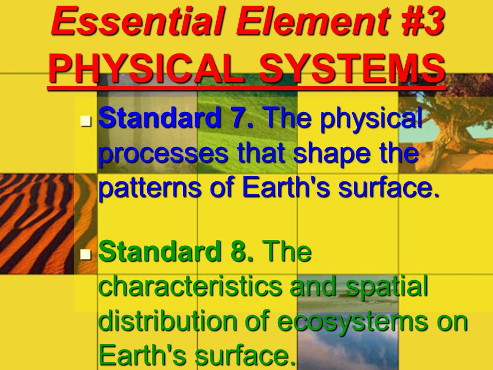 Essential Element #3 PHYSICAL SYSTEMS