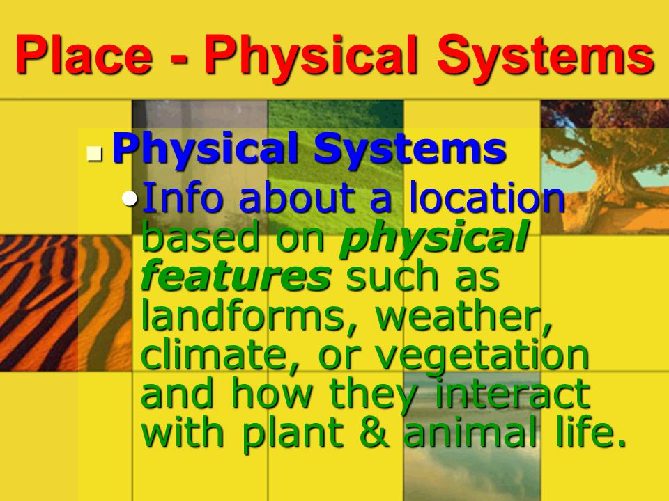 Place - Physical Systems