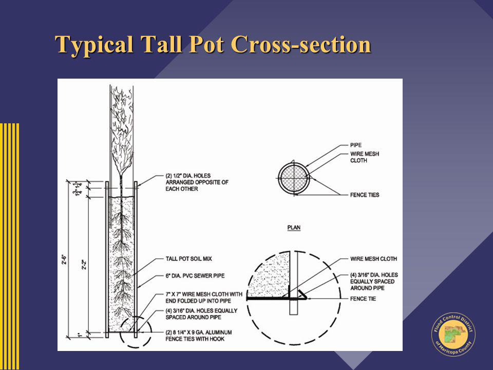 Typical Tall Pot Cross-section