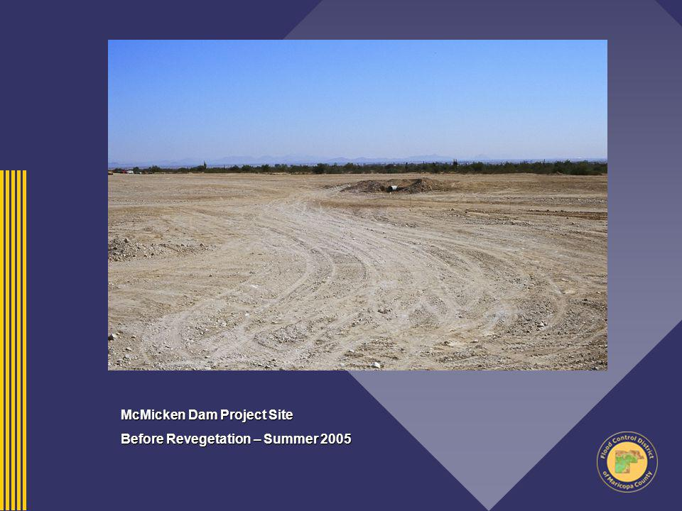 McMicken Dam Project Site Before Revegetation – Summer 2005