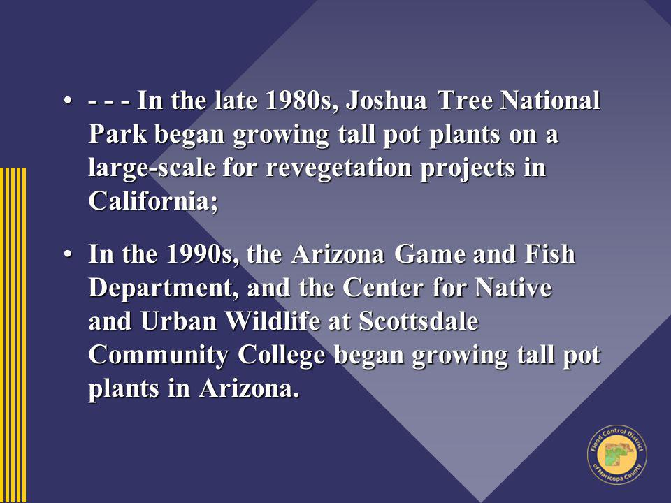 - - - In the late 1980s, Joshua Tree National Park began growing tall pot plants on a large-scale for revegetation projects in California;