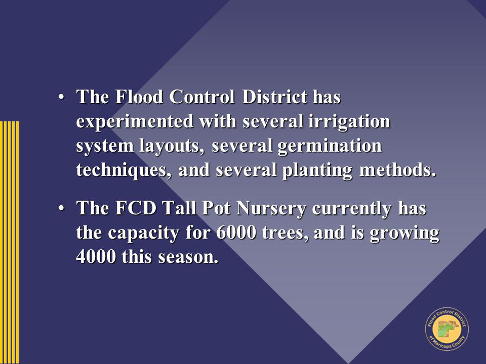 The Flood Control District has experimented with several irrigation system layouts, several germination techniques, and several planting methods.