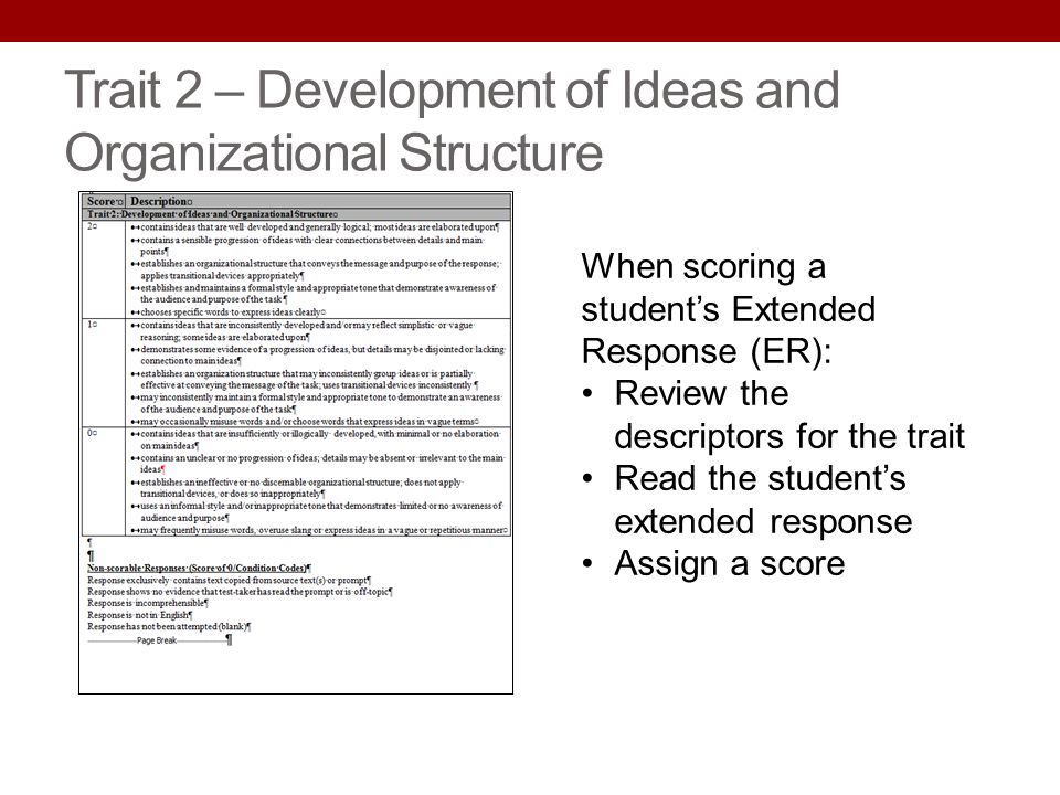Trait 2 – Development of Ideas and Organizational Structure