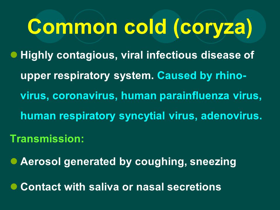 Common cold (coryza)