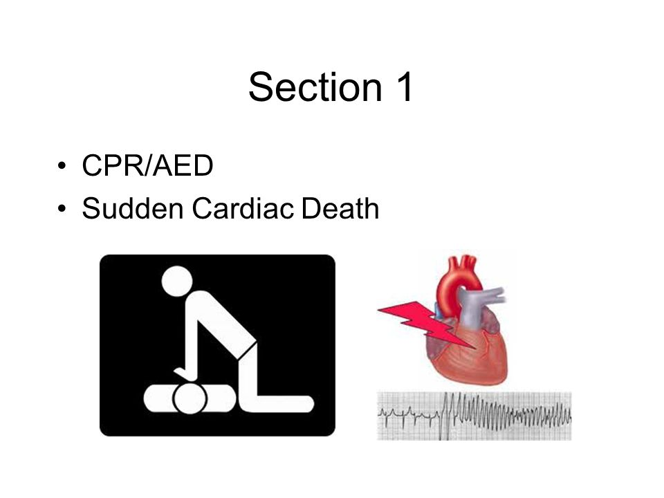 Section 1 CPR/AED Sudden Cardiac Death