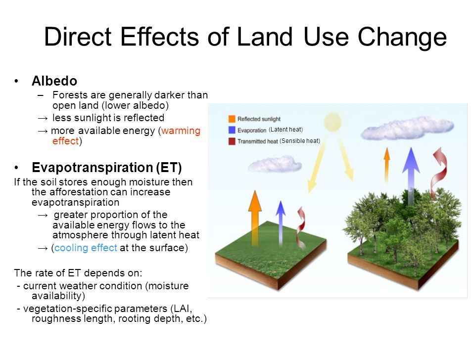 Direct Effects of Land Use Change