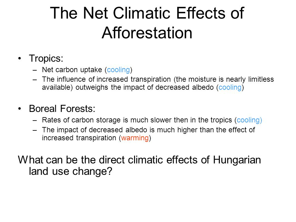 The Net Climatic Effects of Afforestation