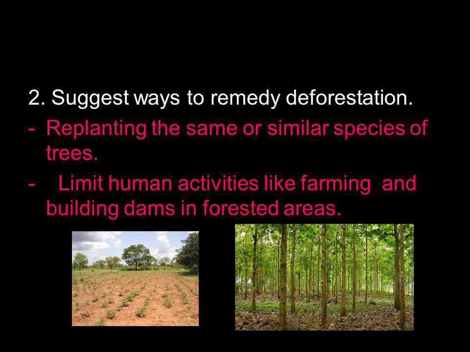 2. Suggest ways to remedy deforestation.